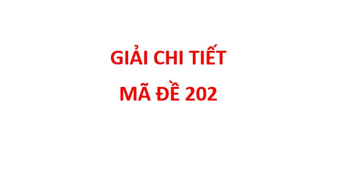 giai chi tiet de thi chinh thuc mon hoa THPT Quoc Gia 2019 ma de 204