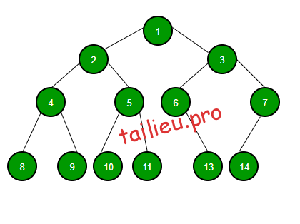cay nhi phan binary tree